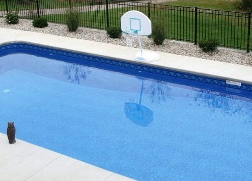 an inground pool with a basketball hoop